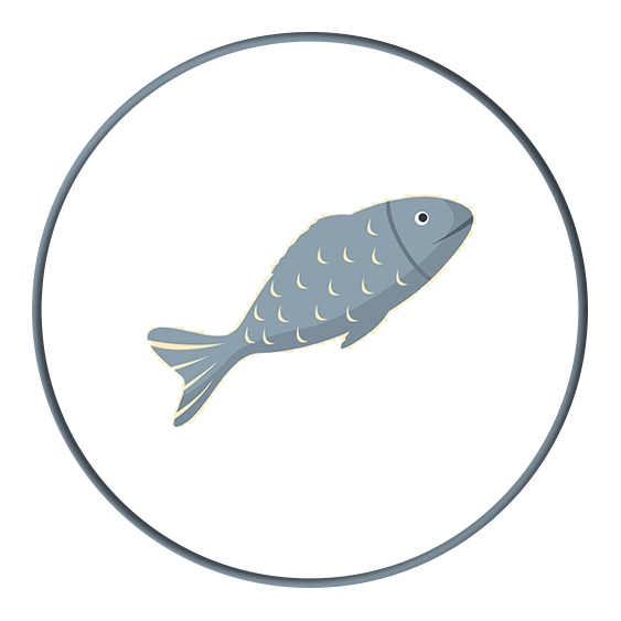cardápio de receitas proteína peixe